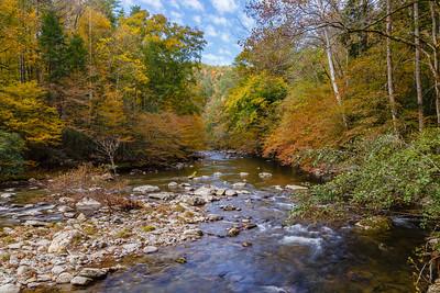 Little River in Autumn