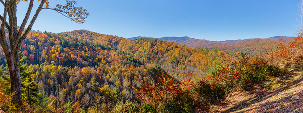 Beautiful overlook on the way into Cataloochee Valley