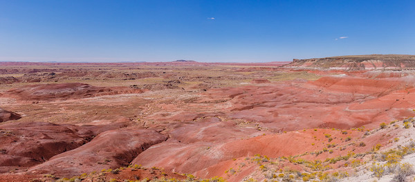 Lacey Point panoramic view of the Painted Desert