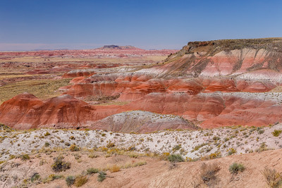 Nizhoni Point view of the Painted Desert