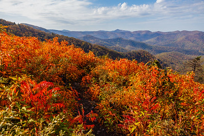 Autumn colors at Brown Mountain Overlook
