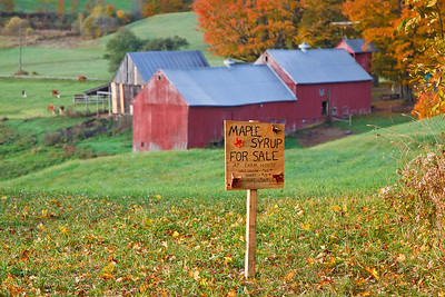 The land of Apple Cider and Maple Syrup.
