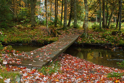 An alluring leaf-covered boardwalk leads the way to Beaver Brook Falls.