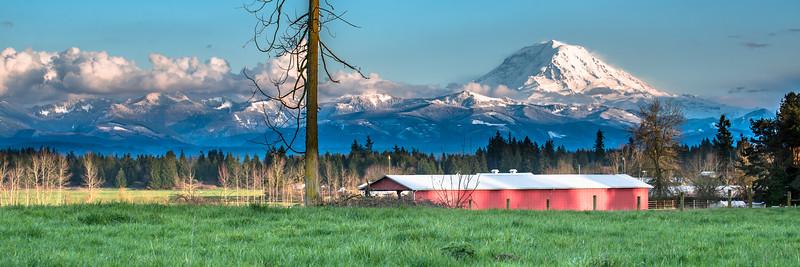 Buckley Barn in the Spring I