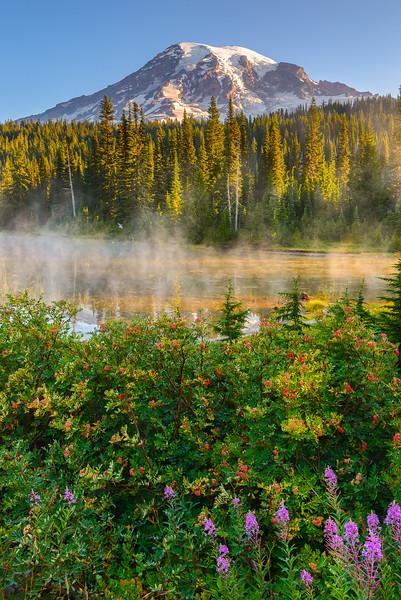 Summer's Peace Reflection Lake