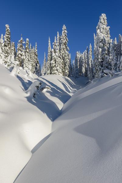 Powder Line Paradise