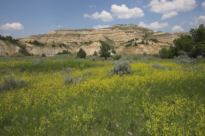 Badlands at Theodore Roosevelt National Park (North Unit)