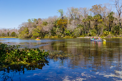 Alexander Springs, Ocala National Forest