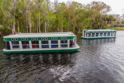 Glass-bottom tour boats at Silver Springs / Silver River
