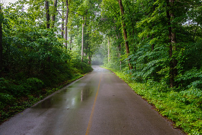 Along the Job Corps Road in Mammoth Cave National Park