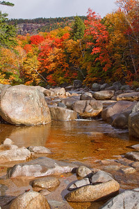 The Swift River runs alongside the Kancamagus Highway and in October the leaves put on an amazing show of color!