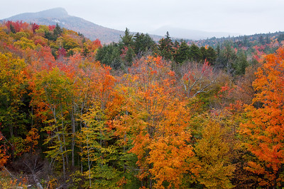 The views along the Kancamagus Highway are nothing less then spectacular!