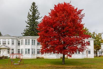 Stunning autumn colors outside the Sunmount Developmental building