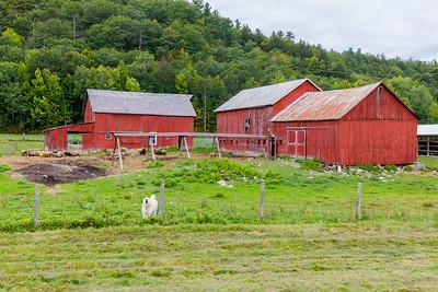 Colorful barns in Adirondack Park