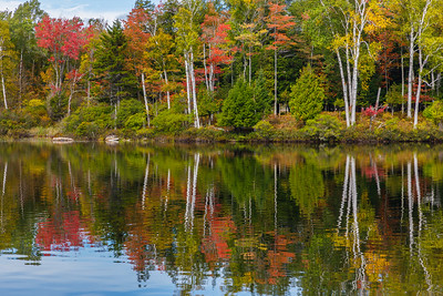 Autumn, just west of Tupper Lake