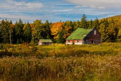 Autumn scenery in the Catskills