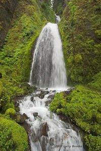 Wahkeena Falls in the Columbia River Gorge National Scenic Area