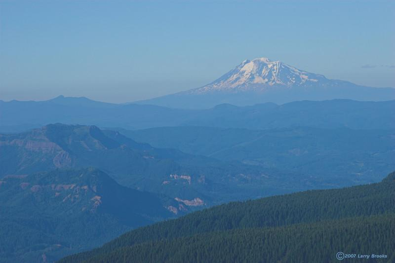 Mt. Adams (elev. 12,307', Washington) as seen from Larch Mountain