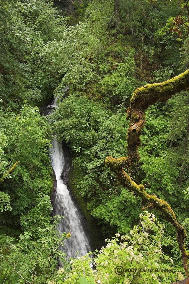 Shepperds Dell in the Columbia River Gorge National Scenic Area