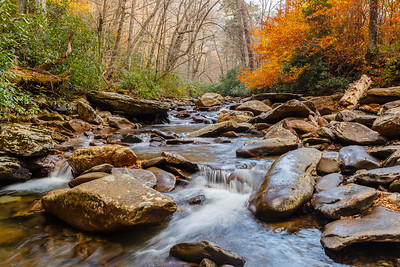 West Prong of Little Pigeon River, Great Smoky Mountains NP