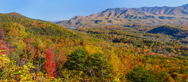 A lovely Autumn view of Great Smoky Mountains NP from the Foothills Parkway