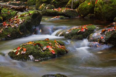 Fallen leaves litter the stream that runs alonside the Appalachian trail to Little Rock Pond.