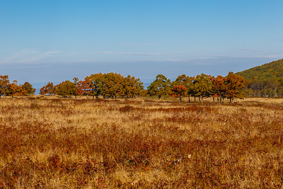 Big Meadows - Shenandoah National Park