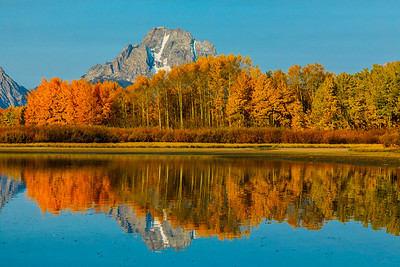 Mt Moran and colorful Aspen trees reflecting on the Snake River - Grand Teton National Park