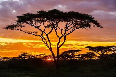 Tanzania, the adventure begins!