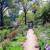 Macculloch Hall Gardens