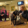 Residents and staff alike have special relationships with these loving canines