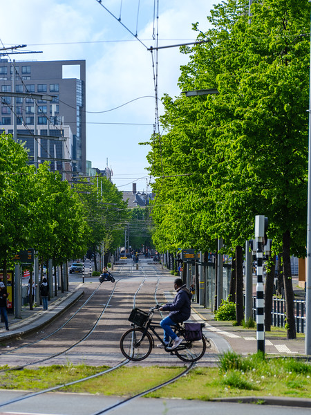 Bicycle crossing the Spui