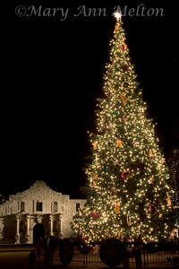 A giant tree lighted by thousands of lights gives Texas' most famous landmark a touch of Christmas spirit.