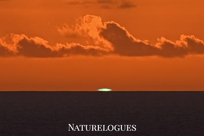 Green Flash!