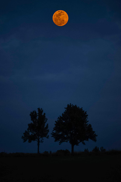 Blue Blood Moon