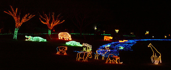 ZOO Lights Dec 22, 2006