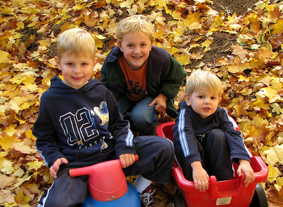 Ethan, Jared and Caleb. October 26, 2006