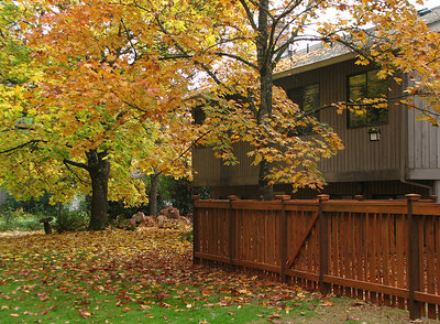 Looking at the back of our house from the greenspace. October 28, 2006