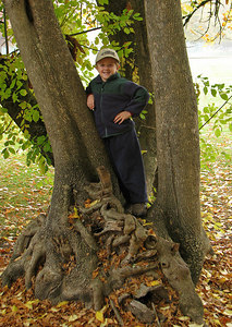 One of Ethan's favorite trees in the greenspace behind our house. October 28, 2006