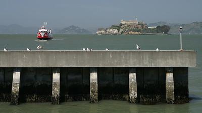 Alcatraz and the bay.