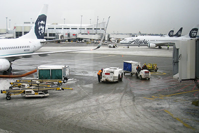 Saturday, December 20, 2008  Seattle Airport, about 2:10 pm.  Our flight was scheduled for 3 pm and finally took off at 4:30 pm, with snow falling.  This doesn't look like much here, but Seattle had already received quite a bit of snow, before the big storm hit this night.