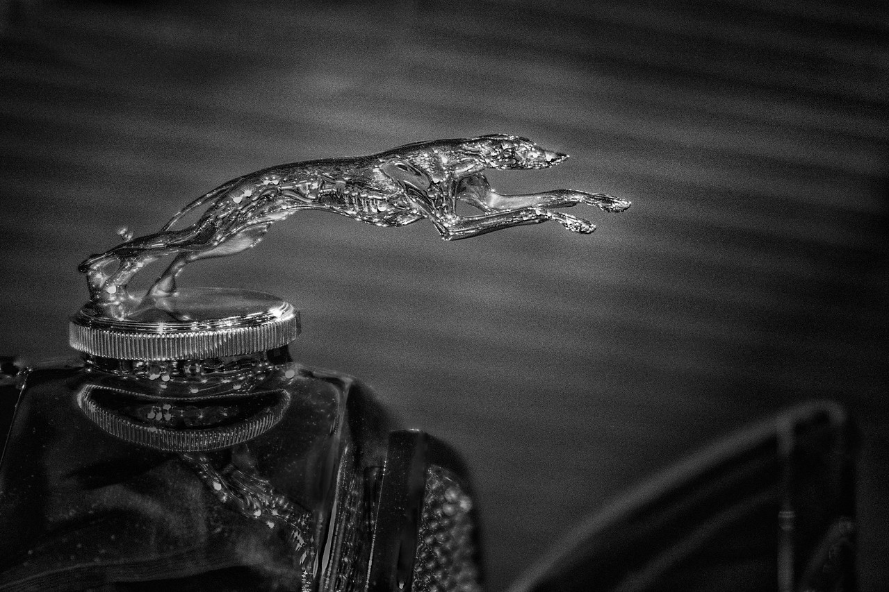 Greyhound Hood Ornament on a 1930's Lincoln