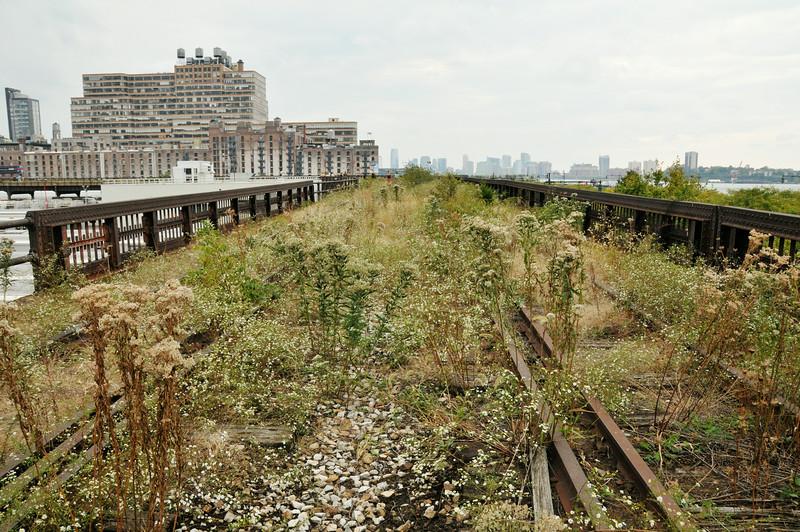 High Line Prairie
