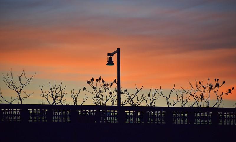 Sundeck Sunset Silhouette