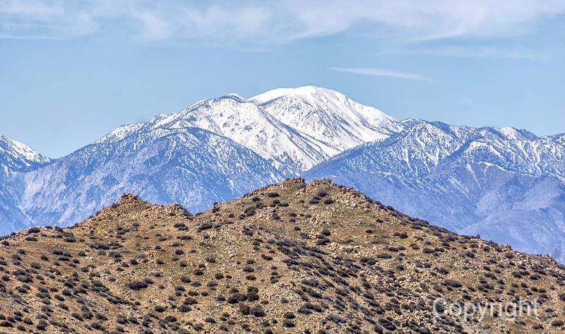 San Gorgonio & Eureka Peak from Quail Mountain