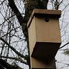 Bird Box 4