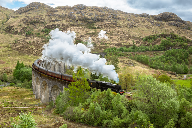 Jacobite Steam Train (aka Hogwarts Express)