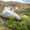 Jacobite Steam Train (aka Hogwarts Express)