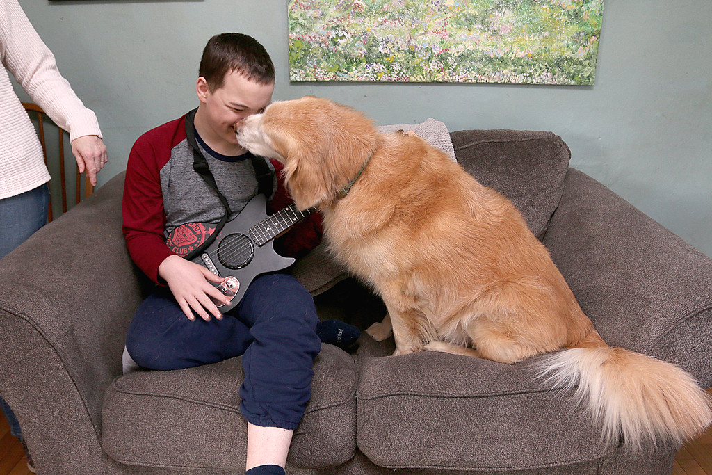 . Stephanie Hoefsmit and her twin sons, who have autism, are losing their service dog Baker, a golden retriever, because he has cancer. Baker has been very instrumental  in helping her sons cope with the world. Baker gives Micah Hoefsmit, 14 one of the twins, a kiss in their home on Saturday. SENTINEL & ENTERPRISE/JOHN LOVE