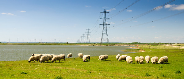 Power lines on Romney Marsh